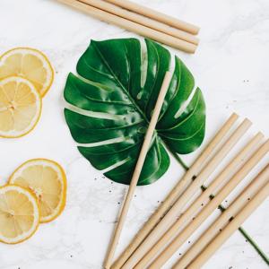 Bamboe rietjes met borstel_2